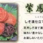 紫鳳梅【お徳用梅干】